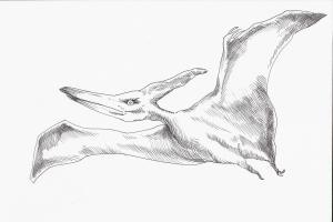 Ilustración de Ignacio Fernández Paupy